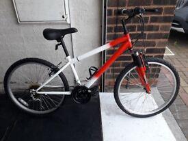 Terrain Teenagers bike. 18 speed. 24 inch wheels (Suit: 10 yrs to 14 yrs).