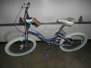 Girl's Schwinn Bicycle 20 Inch