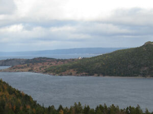 2.5 ACRE BOREAL FOREST ESTATE, PRIVACY GALORE...AVONDALE. St. John's Newfoundland image 12