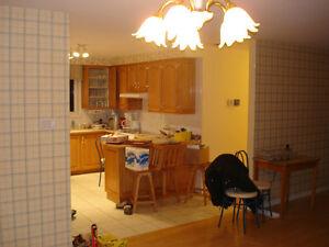 armoir de cuisine en chêne massif avec ilot