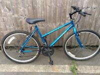 Lion bike ladies mountain bike serviced ready to ride good condition