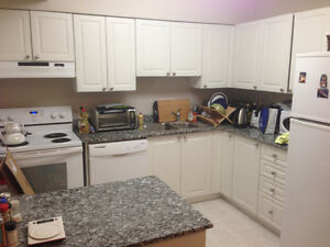 One bedroom for rent in a two bedroom furnished apt Kitchener / Waterloo Kitchener Area image 6