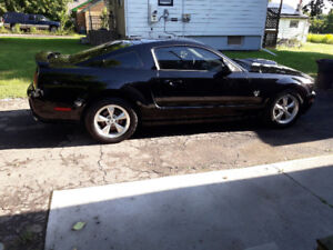 2005-2009 17 inch mustang bullit rims and tires.