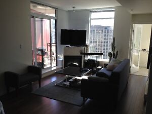 1 Bdrm in Amazing Penthouse