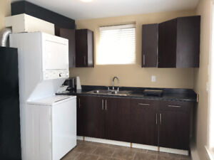 1 bedr  basement suite/ hydro/gas/wifi included/$900