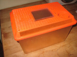 BETA FISH TANK OR CAN USE FOR OTHER LITTLE ANIMALS Cambridge Kitchener Area image 1