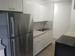 2 BEDROOM/ 1 BATHROOM MODERN BRAND NEW APT WITH NEW APPLIANCES!!