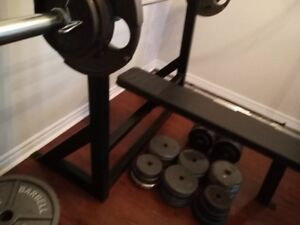 COMMERCIAL GRADE OLYMPIC FLAT BENCH (trade or sale)