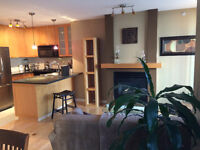 Fully Furnished 2 BR Luxury Condo- w/2x/mo Housekeeping