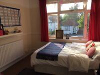Lovely, bright double room near Redland