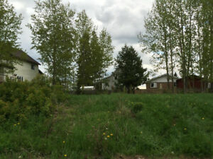 READY TO BUILD? Vacant lots available in South Porcupine