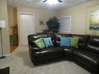 3 Bed, Laundry, Central, Pet Friendly, Immediately