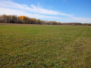Acreage for sale just off the highway