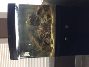 29 gallon Biocube and 30 pounds of live rock for sale $300.00