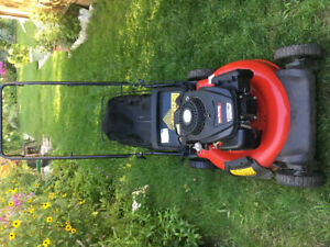 Lawnmower sale
