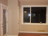 Beautiful brand new walkout spaci. 2 Bed. N.W basement for rent.