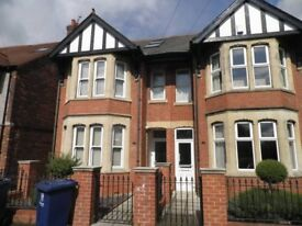 Large double room in refurbished house share with young professionals
