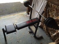 York Weight Bench, plus weights