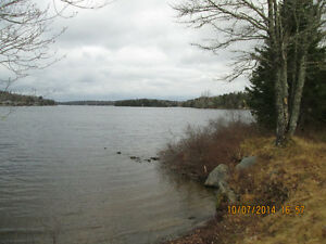 Area of nice homes by Lewis Lake