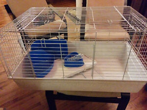 Cage petits animaux (furet, lapin, chinchilla...)