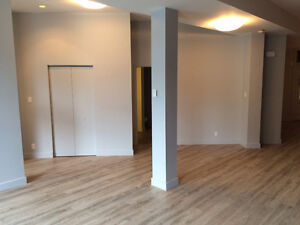 Large, modern 1 bedroom + den apartment in heart of downtown