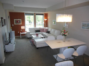 1 Bedroom + Den Furnished Condo in Old St. Boniface 770 Tache