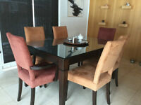 SOLID BIRCH Wood Dining Table and 6 Chairs
