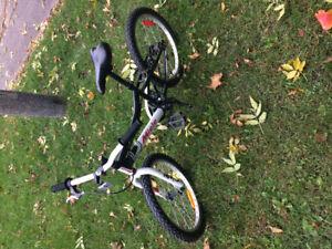Vélo Miele 20 pouces pour enfants