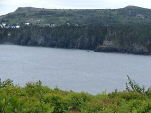 REDUCED !! 3 Acres for a  prime ocean front Residence  Deal !! St. John's Newfoundland image 4