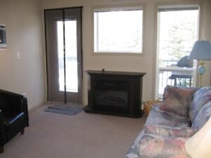 Fully Furnished and Equipped 2 Bedroom Condo