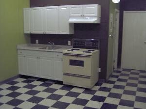 One bedroom Apartment in Davidson Sask