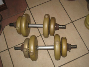2 adjustable Dumbbells with 30 Lb total plastic weights (2X15LB)