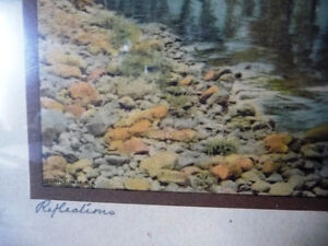 """Antique Colored Photo After Wallace Nutting """"Reflections"""" 1920's Stratford Kitchener Area image 5"""