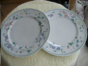 "PAIR LARGE ATTRACTIVE VINTAGE 10.5"" PORCELAIN DINNER PLATES"