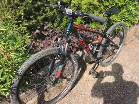 Mountain Bike - GT Aggressor Sport - 15 inch frame