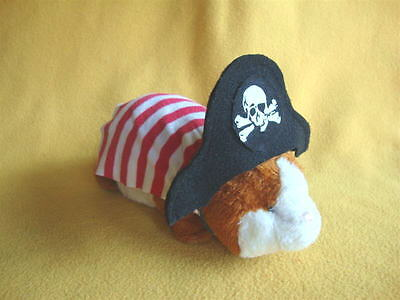 Guinea Pig Pirate Costume (Pirate Costume for Guinea Pig from)