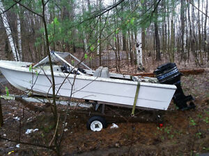 17 foot fiberglass boat wth 50hp mercury