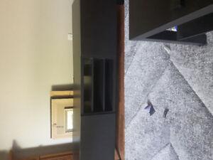 television stand/storage unit