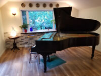 Piano lessons including a free piano tuning with registration.