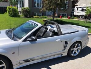 Mustang Saleen authentique No 958 sur 971 produites,