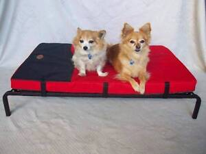 NEW Four Seasons 3 in 1 Combo Dog Bed - DIRECT TO PUBLIC! Scoresby Knox Area Preview
