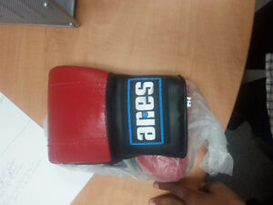 Aries Boxing Gloves 12oz (Blue and Red)