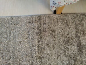 Area rug 9 x 6 clean, 1 year old