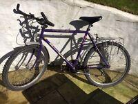 Cheap men's bike