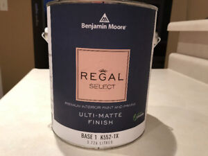 Benjamin Moore Regal Select Interior Paint - Iced Cube Silver
