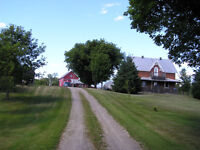 Farm - 320 Acres Land - Private Location