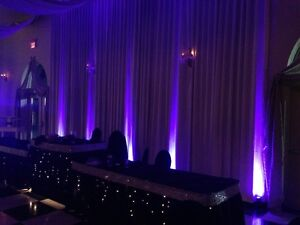 Professional Wedding Disc Jockey Services Kingston Kingston Area image 3