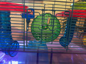 Hamster Cage + Accessories, Litter, Food, etc.