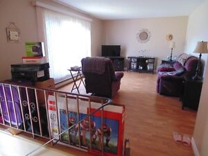 Dieppe 3 bdrm apt avail immediately