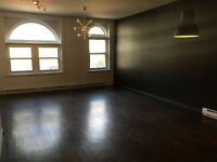 Sunny, spacious 2BR apartment in Plateau. 900 sqft
